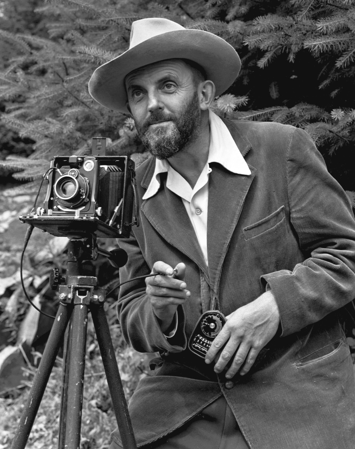 A black-and-white, candid photo of Ansel Adams behind his camera in front of a pin tree. He wears a fedora.